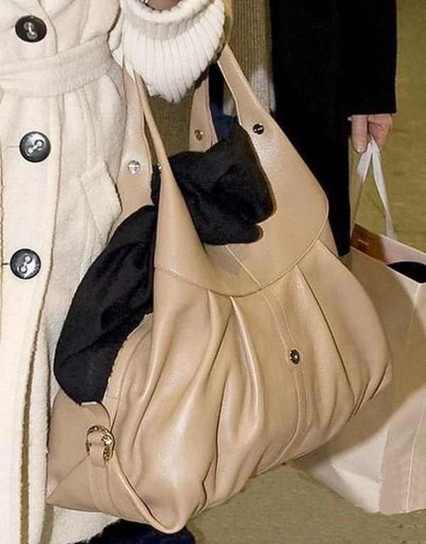 Luxury Trends - Nude Color Handbag - Eva Mendes handbag celebrity airport style photo 1