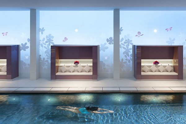 Mandarin Oriental Paris Hotel Spa Swimming Pool photo